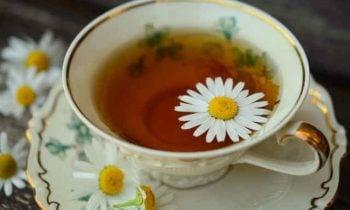 Herbal Teas for Beauty Sleep